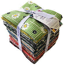 Winter Walk Denyse Schmidt Fat Quarter Bundle